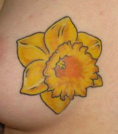 Daffodil tattoos can be designed in a variety of different styles and variations. View dozens of daffodil tattoo designs and learn the symbolism behind the daffodil. Get great ideas for your tattoo. Daffodil Flower Tattoos, Pretty Flower Tattoos, Aster Flower, Tattoo Flowers, Vintage Tattoo Sleeve, Sleeve Tattoos, Floral Tattoo Design, Flower Tattoo Designs, Pisces Tattoos