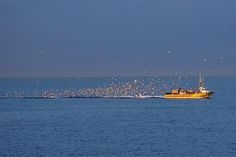 """""""May the holes in your net be no larger than the fish in it""""  Fishermen in Blanes, Spain. http://www.blanes.nl"""
