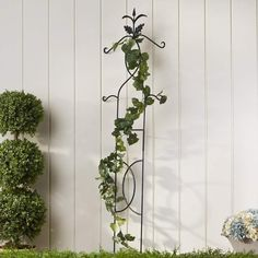 Alcott Hill Use this trellis to encourage growth and curate varying heights in your garden. Its sturdy body makes the perfect companion to climbing vines and clinging vegetable plants. Cedar Trellis, Obelisk Trellis, Iron Trellis, Wooden Trellis, Vine Trellis, Patio Trellis, Metal Pergola, Cheap Pergola, Wooden Pergola