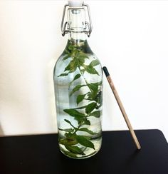 A mint stemp in our drinking bottle provides your drinking water with a fresh taste of mint.