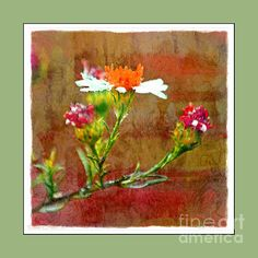 Tiny Wildflowers - Digital Paint Iv Green Frame by Debbie Portwood