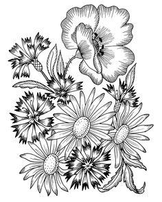 Галерея цветочных мотивов для вышивания . Обсуждение на LiveInternet - Российский Сервис Онлайн-Дневников