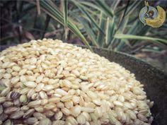 Buckwheat, Muesli, Raw Vegan, Raw Food Recipes, Rice, Vegetables, Natural, Granola, Vegetable Recipes