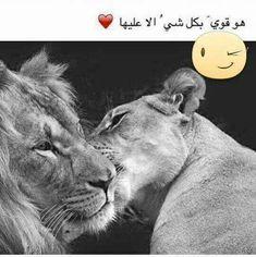 قوي بكل شئ الا عليا هيما ملك قلبي Roman Love, Arabic Words, Romans, Qoutes, Love Quotes, Lion, Clock, Animals, Love Pictures