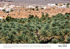 Al Hamra with old mudbrick buildings and palm oasis