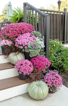 Beautiful Fall Garden Decor Ideas For Inspiration Beautiful Fall Garden Decor Ideas For Inspiration,Flur gestalten – The backyard porch, patio, or deck is a favorite place for many people to relax and. Jardin Decor, Fall Mums, Decoration Entree, Garden Decorations, Fall Containers, Fall Planters, Fall Potted Plants, Potted Mums, Autumn Garden