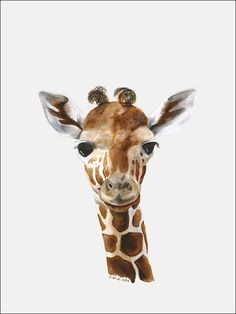 Baby Giraffe Portrait - Canvas Wall Art - Starting at $59 - Shop Now!