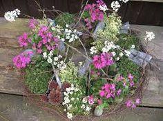 Bildergebnis für balkonkästen bepflanzen