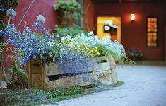 Na entrada da casa, receba os convidados com flores. Não são precisos arranjos sofisticados. Um caixote dá toque campestre à festa