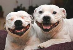 Happy Saturday!! Put a smile on and have a GREAT weekend!!! :)