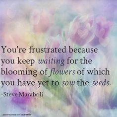 You're frustrated because you keep waiting for the blooming of flowers of which you have yet to sow the seeds. - Steve Maraboli #quote