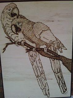 Eu pirografo: Casal de araras! Casal da sorte!