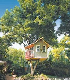 Home Office tree house shed
