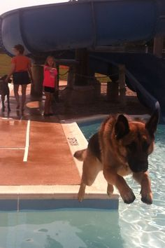 My Zeus jumping over the pool to Come to me