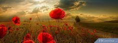 Remembrance Facebook Covers 2014 Armistic Images 8859screen.jpg