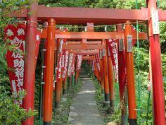 sasuke inari shrine , Kamakura.