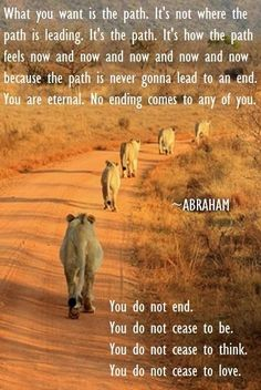 """You do not end."" ~Abraham-Hicks ..*"