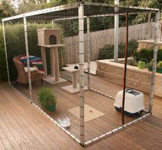 ... Cat Enclosure on Pinterest