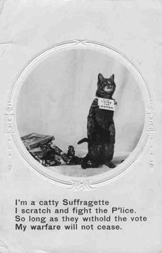 """I am a catty Suffragette I scratch and fight the P'lice. So long as they withold the vote my warfare will not cease"""