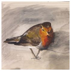 Robin  painted with gouache