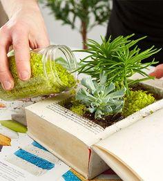 Book planter DIY , tolle indoor gardening Idee mit alten Büchern! ...mit Erde, Dekosand und Moos befüllen