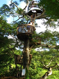 Here are some of the coolest treehouses in the world. Naturally, as we learn more about our relationship to trees and our planet, we're realizing we want to spend more time in and around them. More and more people are building creative treehouses for use as hotels, restaurants, teahouses, or occasionally as a means of communicating with extraterrestrials (seriously! — see the Beach Rock Treehouse below).