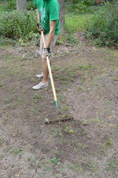 Prepping Grass Seeds