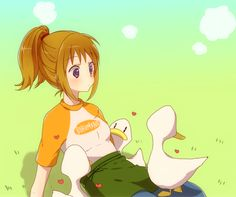 Pony and Ducks from Harvest Moon: Another Wonderful Life