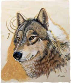 7360eec68 64 Best Wolf   Coyote Art images