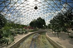 Epcot Greenhouse in Disney World Florida Disney Rides, Disney World Trip, Disney World Resorts, Disney Vacations, Disney Love, Disney Magic, Disney Parks, Orlando, Walt Disney Imagineering