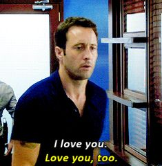 Steve McGarrett // Danny Williams // Hawaii five 0