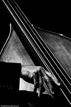 (The hands of bassist Ron Carter at work, captured by Samir Ljuma at the Skopje Jazz Festival… Ron Carter Samir Ljuma) Monochrome Photography, Black And White Photography, Sound Of Music, Live Music, Sound Art, Era Do Jazz, Ron Carter, Jazz Poster, Double Bass