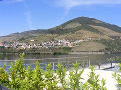 Hotel Folgosa Douro - Landscape