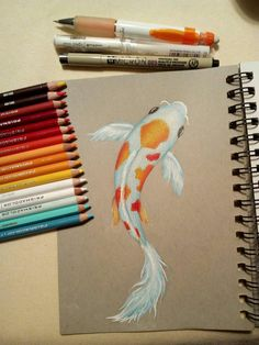 Koi fish drawing by philosophicalphoton on DeviantArt I used prismacolor pencils, derwent coloursoft, caran d'ache pablo pencils, faber castell polychromos and a uniball white gel pen. Also I used a pigma m. Koi Fish Drawing, Fish Drawings, Cool Art Drawings, Pencil Art Drawings, Realistic Drawings, Art Drawings Sketches, Colorful Drawings, Horse Drawings, Drawing Art