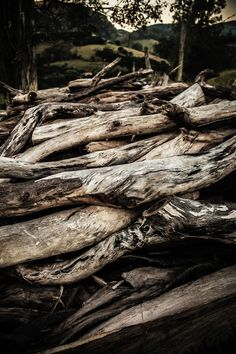 Image about nature in Folk/Celtic/Viking/Middle Age by ↟ C l í o d h n a ↟ #pattern #wood #forest #woods #rustic #field #nature #camp #texture #canon #FF #F4F #random #L4L