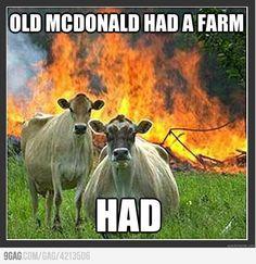 HAD A FARM.
