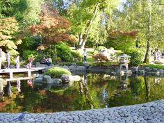 The Kyoto Gardens, Holland Park, Kensington, London  http://static.panoramio.com/photos/large/28152916.jpg
