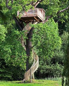 ten meters above ground, a spiral staircase takes you up to this #treehouse in normandy, france designed by la cabane perchée.  #designboom #architecture