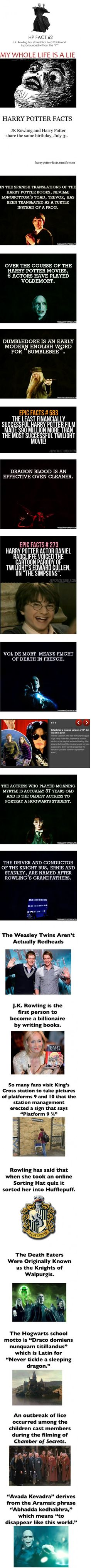 Funny pictures about Facts You May Not Know About Harry Potter. Oh, and cool pics about Facts You May Not Know About Harry Potter. Also, Facts You May Not Know About Harry Potter photos. Ridiculous Harry Potter, Harry Potter Facts, Harry Potter Love, Harry Potter Fandom, Harry Potter Books, Hogwarts, Slytherin, Lord Voldemort, The Big Bang Therory