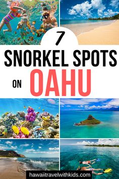 Planning a trip to Oahu, Hawaii and want to find the coolest snorkel spots? Find out where to go all over Oahu to see gorgeous tropical fish and Hawaiian sea turtles! Hawaii Honeymoon, Kauai Hawaii, Maui, Hawaii Trips, Hawaii Life, Honeymoon Destinations, Oahu Vacation, Vacation Rentals, Viajes