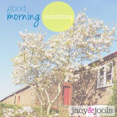 Loving this morning's sunshine!   www.jacyandjools.co.uk  #sunshine #summer #sun #smile #cheshire #altrincham #online #jewellery #sterlingsilver #silver #charm #stackable #jacyandjools #repost #wiwt #jotd #ootd #instastyle #instafashion #fashiongram #lookbook #fashionista #fbloggers #fashionbloggers #follow #regram