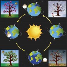 Graphic of four seasons : ☀️🌸 Spring, 🌞🍎 Summer, ⛈🍁 Autumn~Fall, 🌨☃️Winter Earth Science Projects, Earth And Space Science, Science Activities For Kids, Preschool Science, Montessori Activities, Science Experiments Kids, Science Classroom, Science Education, Science For Kids