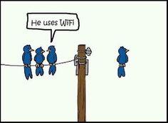 WiFi #tech