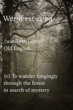 Werifesteria; to wander longingly through the forest in search of mystery.