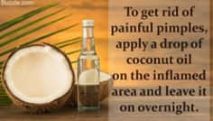 There are several uses and benefits of using coconut oil for cooking but did you know that you can use it directly on your skin, hair and body? Many people have experienced the first hand benefits of coconut oil on…Read more → Coconut Oil Facial, Coconut Oil Moisturizer, Coconut Oil For Teeth, Cooking With Coconut Oil, Coconut Oil Uses, Benefits Of Coconut Oil, Organic Coconut Oil, Painful Pimple, Face Scrub Brush