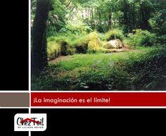 ¡En tu jardín, la imaginación es el límite!