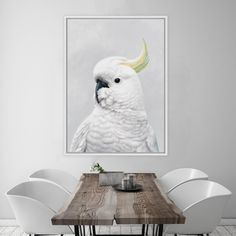 Featuring a striking white sulfur crested cockatoo, this canvas print was originally hand painted by our in-house artist team, and now available as a reproduction stretched and ready-to-hang canvas art piece. Size & frame colour options available. We ship worldwide. #ThePrintEmporium #cockatoo #white #birdart #art #canvas #homeinspo www.theprintempor...