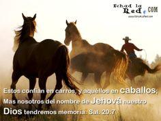 """Fondo de pantalla con el mensaje: """"Estos confian en carros y aquellos en caballos, Mas nosotros del nombre de Jehova nuestro Dios tendremos memoria. Salmos 20.7"""