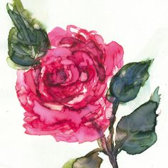 Quality & affordable art at Whistlefish - handpicked contemporary & traditional art. Quick Cards, Affordable Art, Traditional Art, Canvas Art, Greeting Cards, Contemporary, Art Prints, Gallery, Flowers