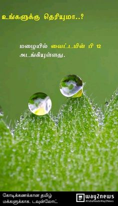 Tamil Motivational Quotes, Mehndi Art Designs, Gernal Knowledge, A Blessing, Kids Education, Did You Know, Helpful Hints, Health Tips, Rain